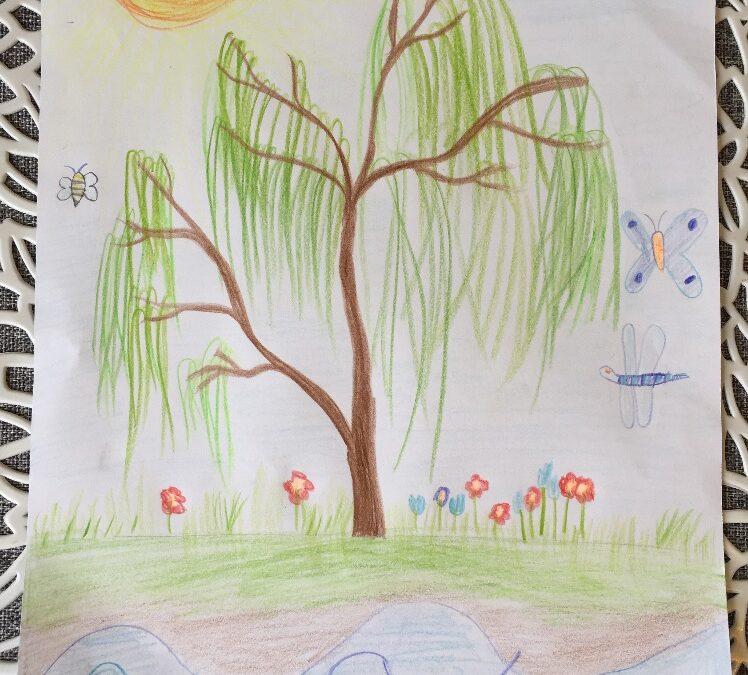 Kedvenc fám – Rajz ovisoktól
