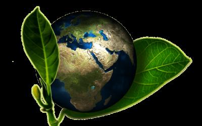 Tényleg csak a karantén mentheti meg a Földet?