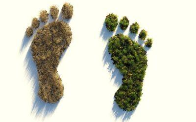 Ökológiai lábnyom – Gyakran emlegetjük, de valójában mit is jelent?